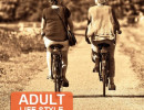 Adult Life Style Bikes